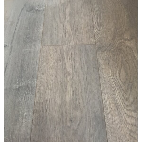 European Oak 8 x 49 x 12mm Laminate Flooring in Brown (Set of 4) by Christina & Son