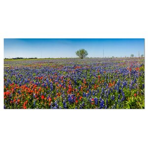 'Texas Wildflowers Field' Photographic Print on Wrapped Canvas by Design Art