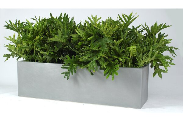 Cannon Composite Planter Box by Allied Molded Products