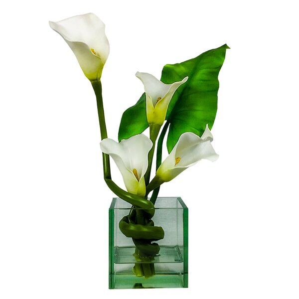 Calla Cube Lilies Floral Arrangement in Vase by Bloomsbury Market