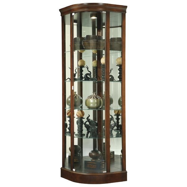 Brinker Curio Cabinet by Darby Home Co