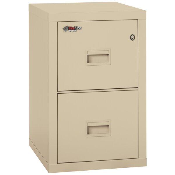 Turtle Fireproof 2-Drawer Vertical File Cabinet by FireKing