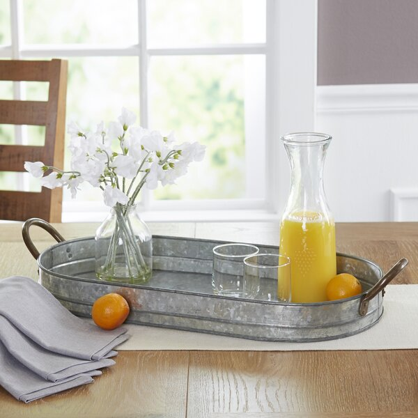 Hugo Galvanized Tray by Birch Lane™