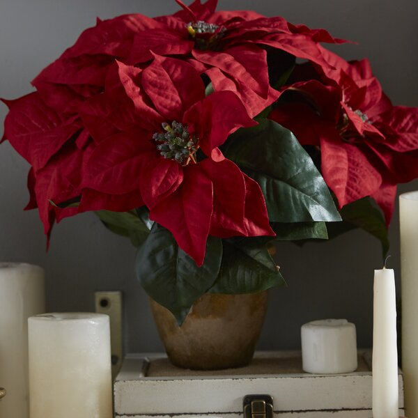 Poinsettia w/Ceramic Vase Silk Floral Arrangement by Three Posts