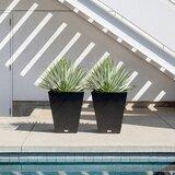 Pure Series Plastic Pot Planter