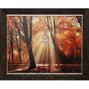 'Dressed to Shine' Framed Photographic Print by Alcott Hill