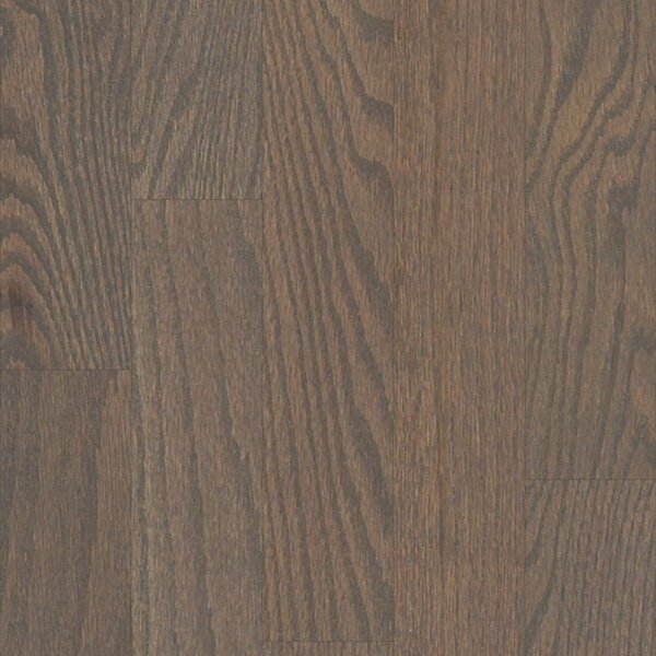 Sawgrass 3-1/4 Solid Red Oak Hardwood Flooring in Shawnee by Shaw Floors
