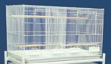 Bird Cage with Divider by YML