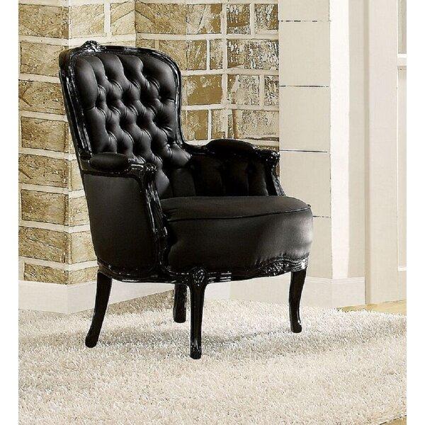 Jakey Wingback Chair by Rosdorf Park