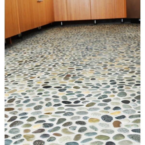Classic Pebble Random Sized Natural Stone Pebble Tile in Multi by Pebble Tile