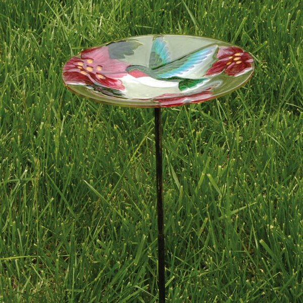 Hummingbird Birdbath by Evergreen Flag & Garden