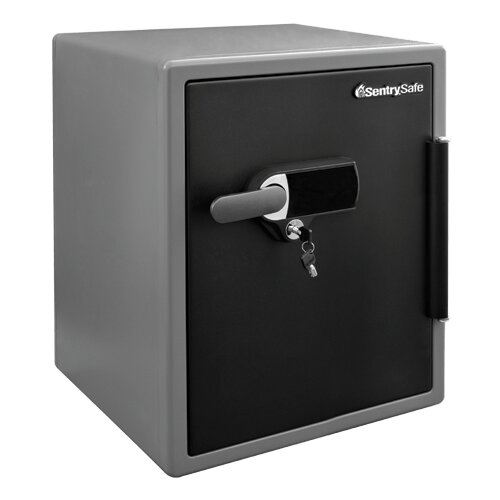 Security Safe with Dual Lock by Sentry Safe