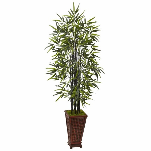 Artificial Floor Bamboo Tree in Rectangular Planter by Bloomsbury Market