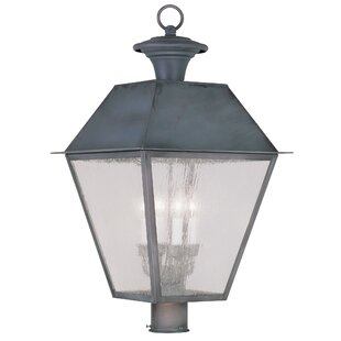 Best Cynda Outdoor 4-Light Lantern Head By Darby Home Co