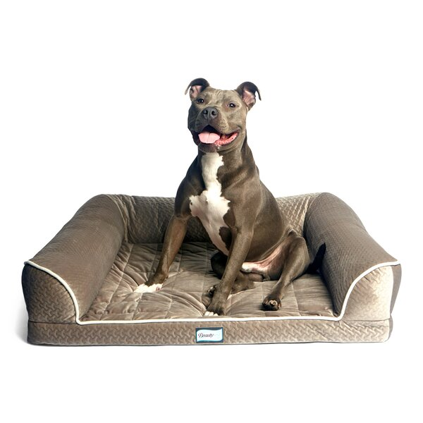 Beautyrest Dream Orthopedic Bolster by R2P Pet Ltd.