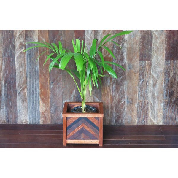 Herringbone Wood Planter Box by Masaya & Co