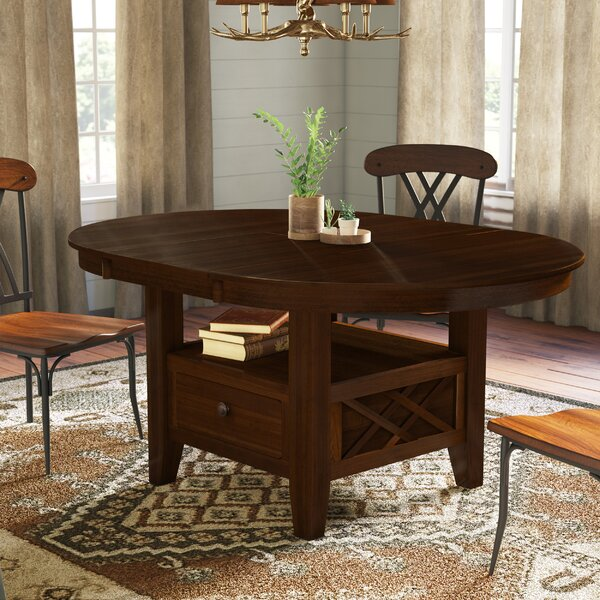 Birney Counter Height Extendable Dining Table by Loon Peak