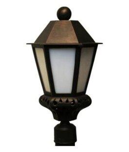 Online Reviews Phillipstown 1-Light Lantern Head By Alcott Hill