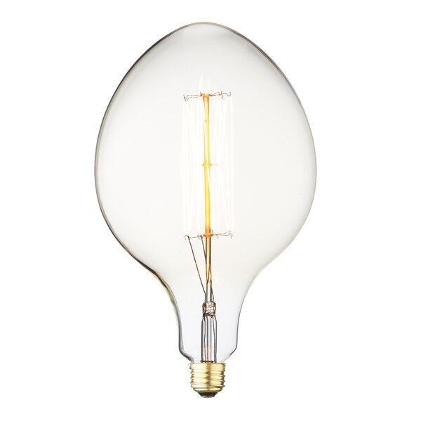 60W E26 Incandescent Vintage Filament Light Bulb by Aspen Brands