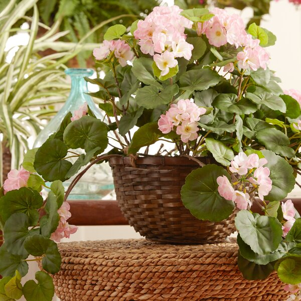 Geranium Hanging Floral Arrangement in Basket by Nearly Natural