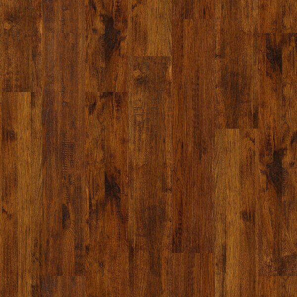 Gilbert 8 Solid Hickory Hardwood Flooring in Amory by Shaw Floors