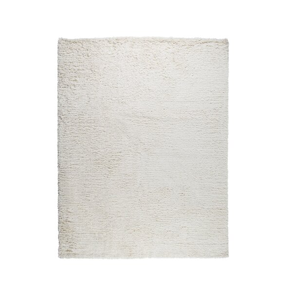Paris Hand-Woven Cotton Ivory Area Rug by Pasargad