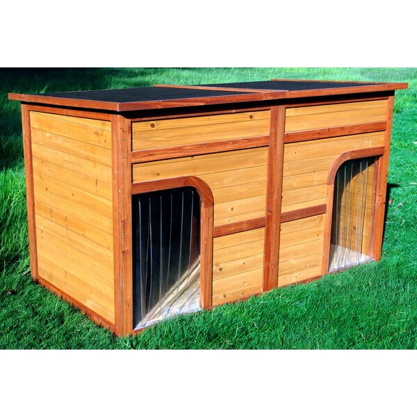 Clint Flat Top Duplex Dog House by Tucker Murphy Pet