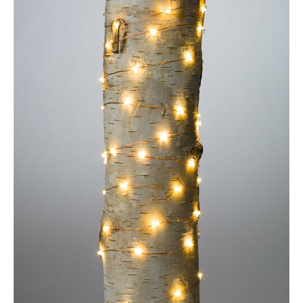 Firefly 60 Light Fairy String Lights (Set of 12) by Plow & Hearth
