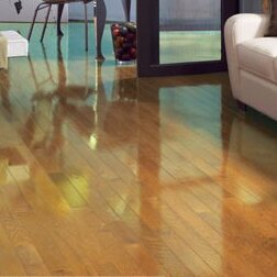 High Gloss 2-1/4 Solid Oak Hardwood Flooring in Natural by Somerset Floors