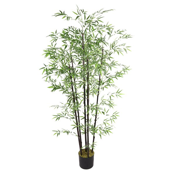 Bamboo Tree in Pot by Wildon Home ®