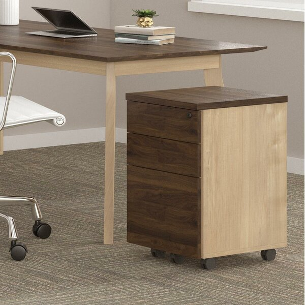 Barbosa 3 Drawer Mobile Vertical Filing Cabinet by Ivy Bronx