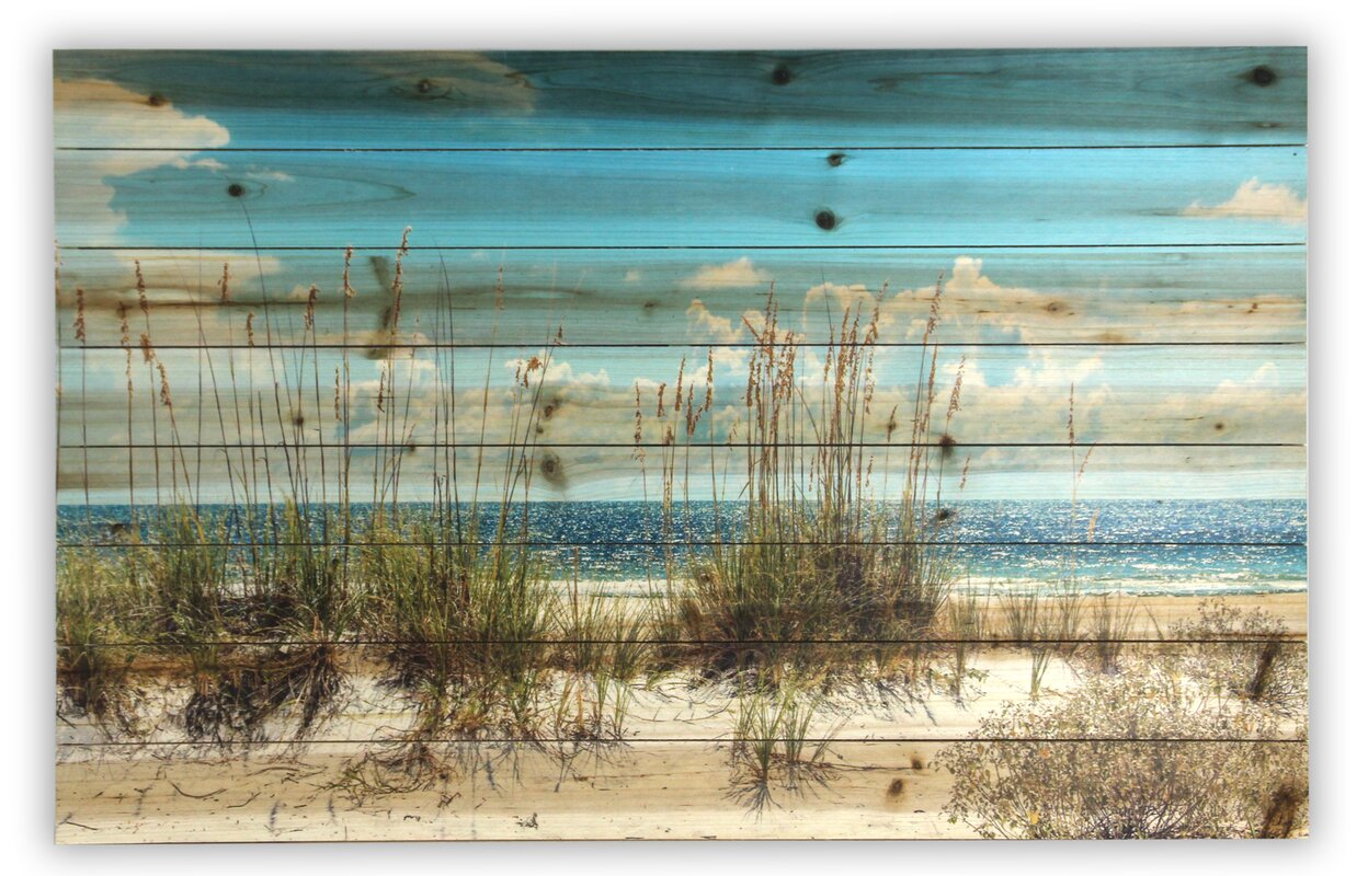 Gallery 57 Sand Dunes Photographic Print Amp Reviews Wayfair