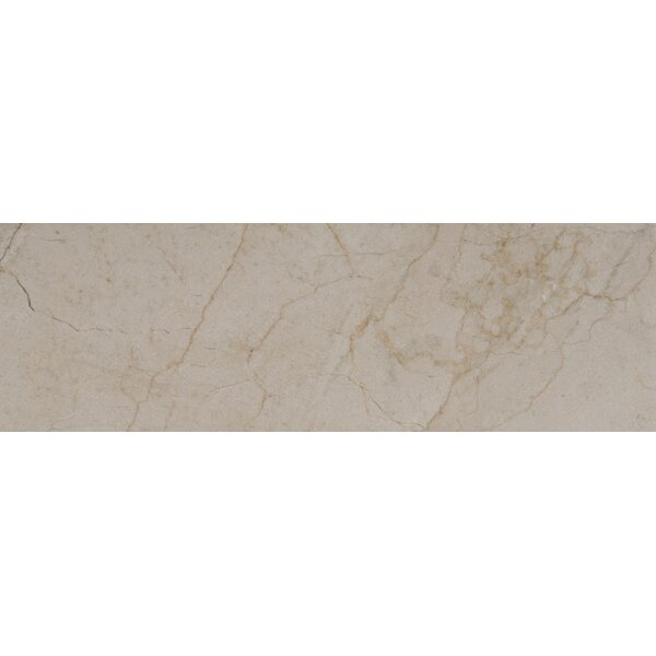 4 x 12 Marble Tile in Cream Marfil by MSI