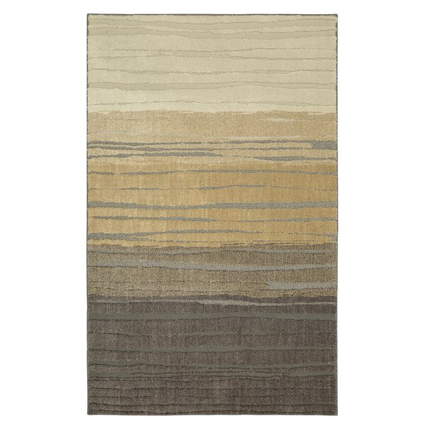 Pagosa Brown Area Rug by Mohawk Home