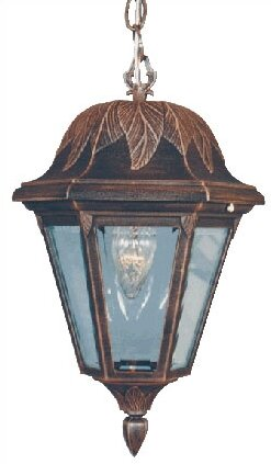 Floral 1-Light Outdoor Hanging Lantern by Special Lite Products