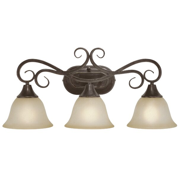 Wiliams 3-Light Vanity Light by Fleur De Lis Living