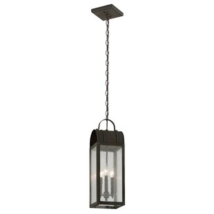 Purchase Bridlington 3-Light Outdoor Pendant By Canora Grey