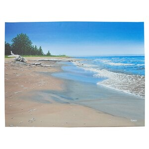 'Driftwood Beach' Photographic Print on Wrapped Canvas by Highland Dunes