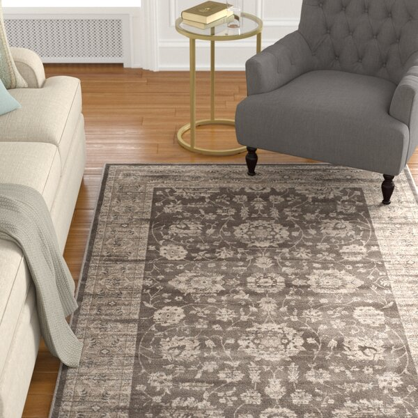 Rindge Brown/Ivory Area Rug by Charlton Home