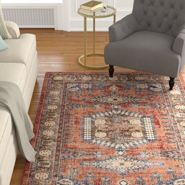 Astoria Grand Nathanson Terracotta Area Rug & Reviews by Astoria Grand