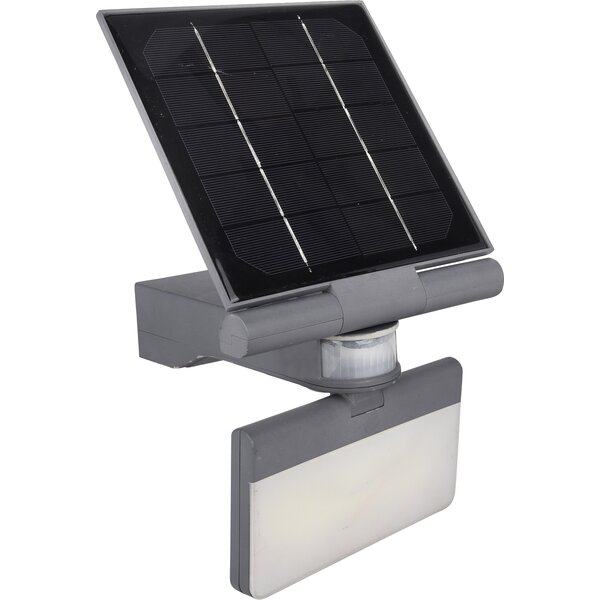 Solar 100 LED Flood Light by Pacific Accents