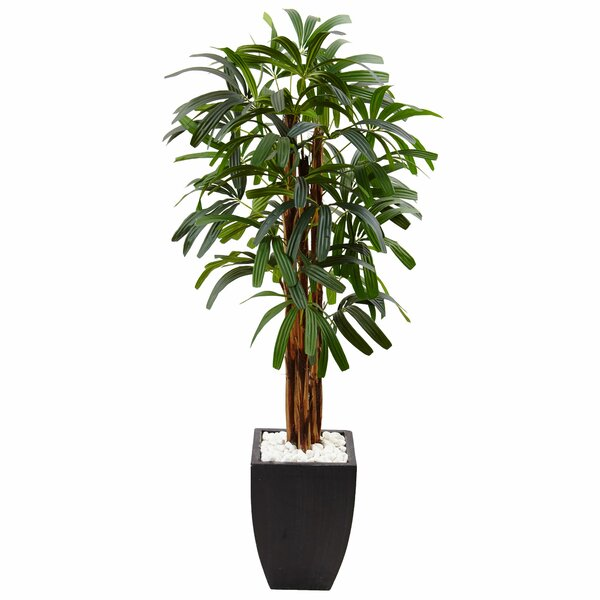 Artificial Raphis Floor Palm Tree in Stone Planter by Bloomsbury Market