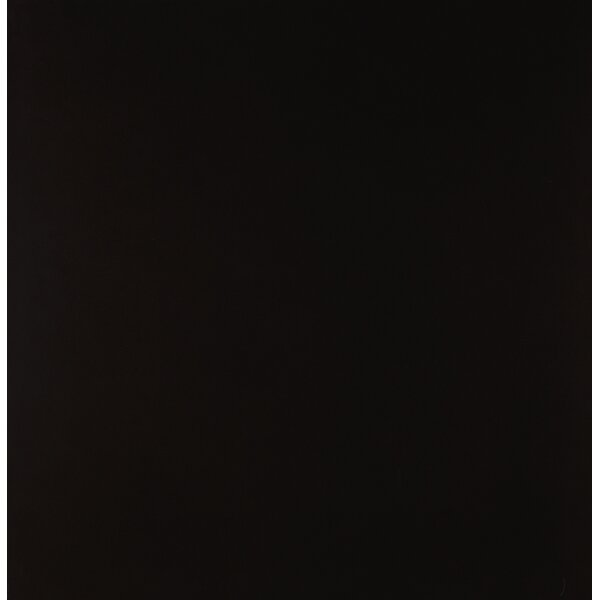 Domino 24 x 24 Porcelain Field Tile in Polished Black by MSI