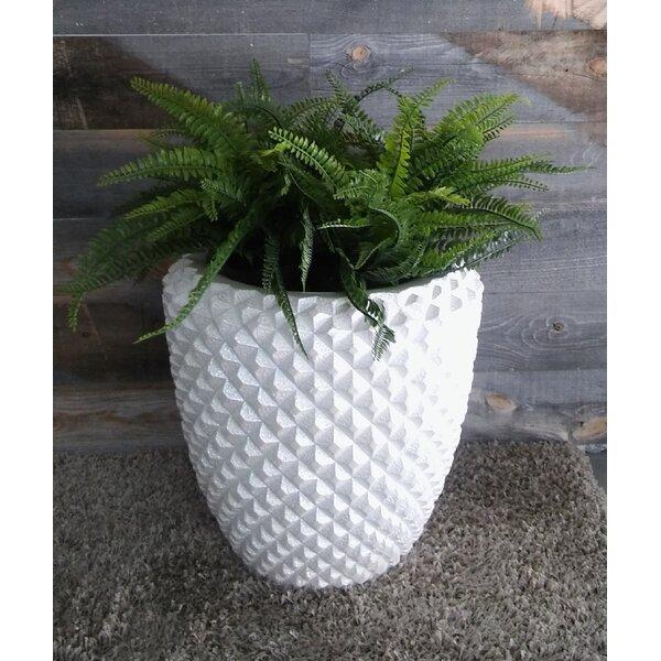 Gaughan Diamond Pot Planter by Ivy Bronx