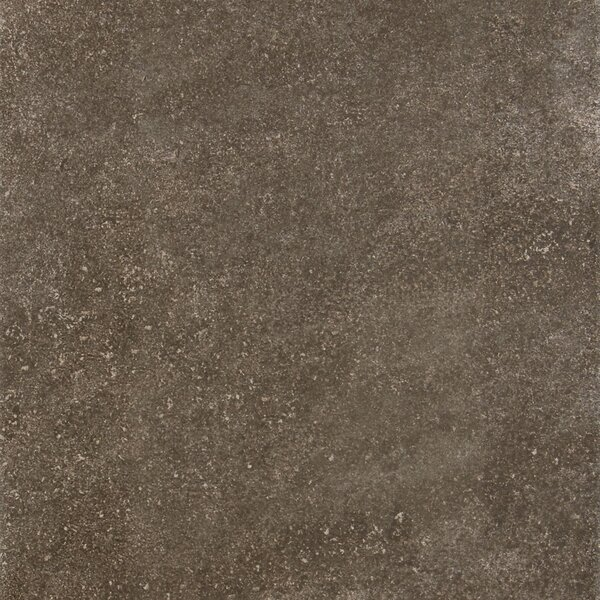 Avondale 10 x 14 Porcelain Field Tile in West Tower by Daltile