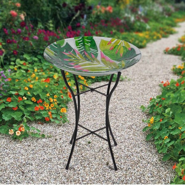 18 Outdoor Glass Birdbath by Peaktop