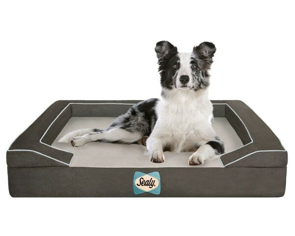 Sealy Lux Bolster Dog Bed by Sealy