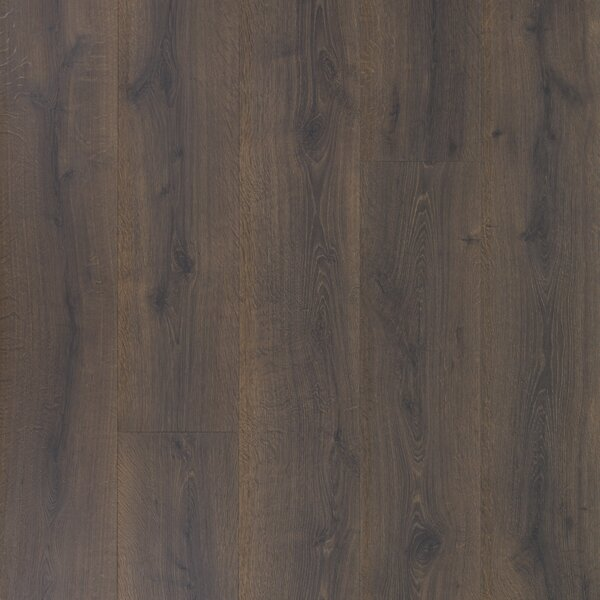 Colossia 9 x 80 x 10mm Oak Laminate Flooring in Eclipse by Quick-Step