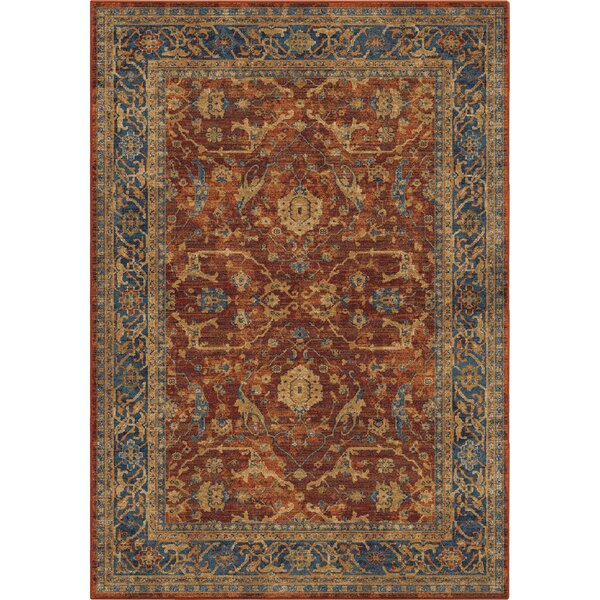 Lilah Red/Blue Area Rug by Darby Home Co