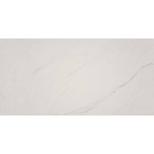 Aria Ice 24 x 48 Porcelain Field Tile in White by MSI